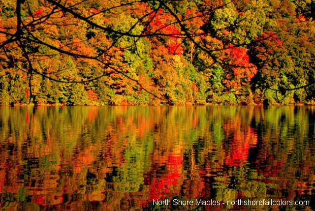 Fall Color Images For The Minnesota North Shore Duluth And
